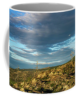 Not So Lone Tree Sunset Coffee Mug
