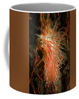 Nudibranch Climbing Its Hydroid Lunch Coffee Mug