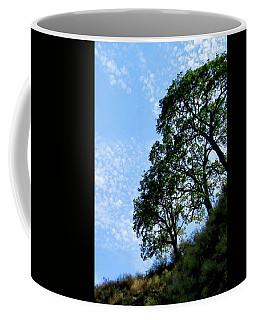 Oaks And Sky Coffee Mug