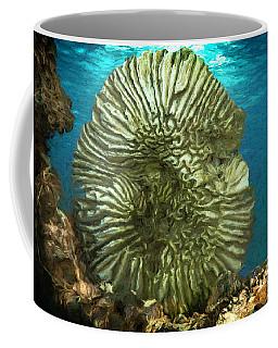 Ocean With Its Life Underground Coffee Mug