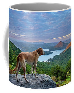 Coffee Mug featuring the photograph Ocoee Sunrise by Matthew Irvin