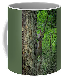 Coffee Mug featuring the photograph Oh Hi by Lora J Wilson