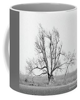 Oklahoma Tree Coffee Mug