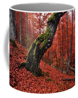 Old Beech Tree Coffee Mug