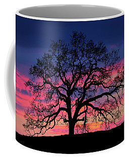 Coffee Mug featuring the photograph Old Oak Sunset by John Rodrigues