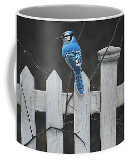 Old Picket Fence Coffee Mug