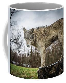 On A Slant Coffee Mug