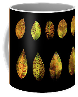One Tree, Many Leaves Coffee Mug