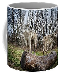 Opposite Ends Coffee Mug