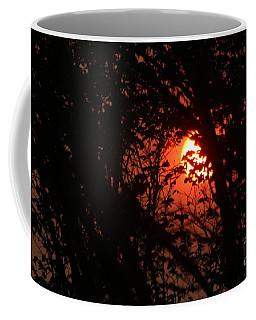 Coffee Mug featuring the photograph Orange Daybreak by Ann E Robson