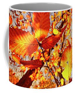 Coffee Mug featuring the photograph Orange Fall Leaves by Meta Gatschenberger