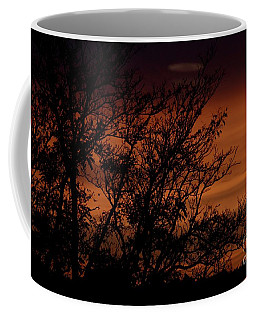 Coffee Mug featuring the photograph Orange Morning by Ann E Robson