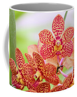 Orange Spotted Orchids Coffee Mug
