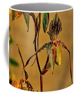 Orchid Study Eight Coffee Mug