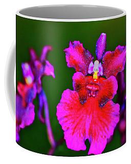 Orchid Study Three Coffee Mug