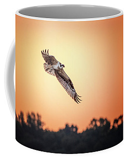 Osprey At Sunrise Coffee Mug