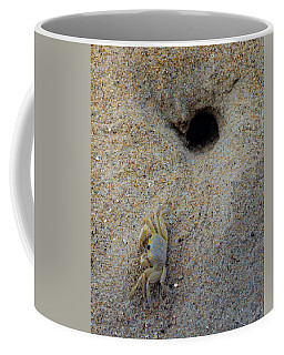 Coffee Mug featuring the photograph Outer Banks Ghost Crab by Lora J Wilson