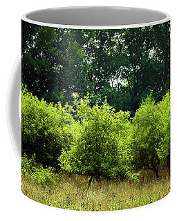 Coffee Mug featuring the photograph Overgrown by Michelle Wermuth