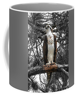 Coffee Mug featuring the photograph Overseer by Sally Sperry
