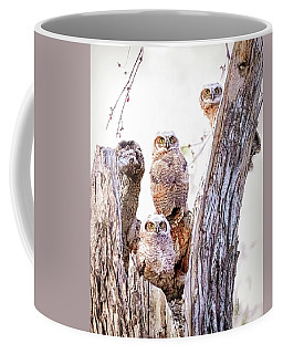 Owl Trio Standing Guard Coffee Mug