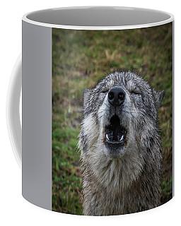 Owwwwwwwwwww Coffee Mug