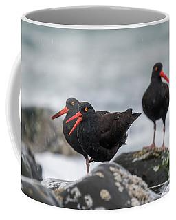 Oystercatchers In The Rain Coffee Mug