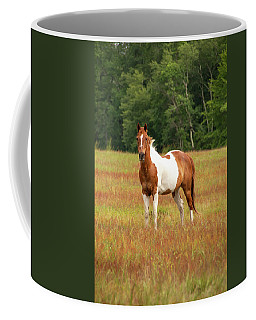 Paint Horse In Pasture Coffee Mug