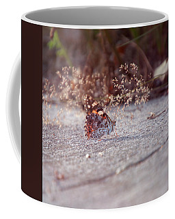 Coffee Mug featuring the photograph Painted Lady - Vanessa Cardui by Jaroslav Buna