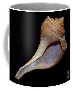 Painted Shell No. 2 Coffee Mug