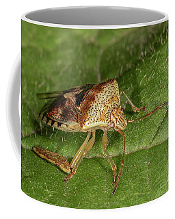 Parent Bug Coffee Mug