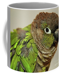 Coffee Mug featuring the photograph Parker by Debbie Stahre