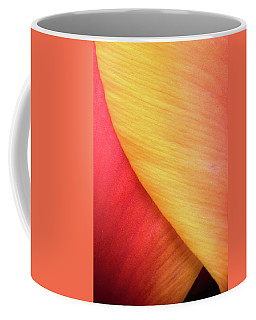 Coffee Mug featuring the photograph Pastel Curve  by Michael Hubley