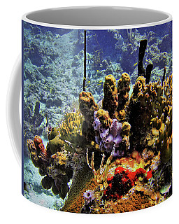 Patch Reef Bluff Coffee Mug