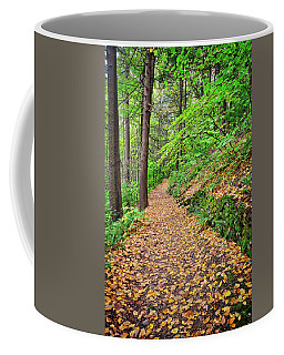 Coffee Mug featuring the photograph Peaceful Autumn Trail At Watkins Glen State Park by Lynn Bauer