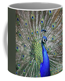 Coffee Mug featuring the photograph Peacock Portrait by Maria Gaellman