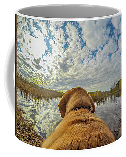 Coffee Mug featuring the photograph Pee Dee Reflections by Matthew Irvin