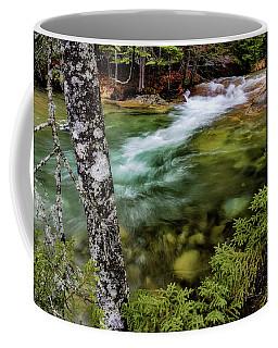 Coffee Mug featuring the photograph Pemigewasset River, Basin Trail Nh by Michael Hubley