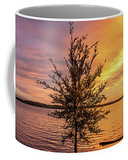 Percy Priest Lake Sunset Young Tree Coffee Mug