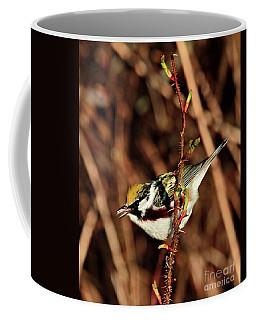 Perky Little Warbler Coffee Mug