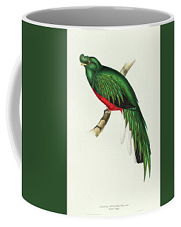 Peruvian Trogon Coffee Mug