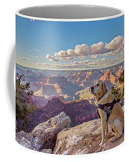 Coffee Mug featuring the photograph Photo Dog Jackson At The Grand Canyon by Matthew Irvin