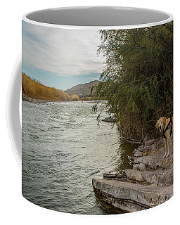 Coffee Mug featuring the photograph Photo Dog Jackson At The Rio Grande by Matthew Irvin