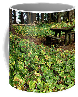 Picnic  Table In The Forest  Coffee Mug