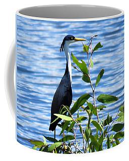 Pied Heron Tree Coffee Mug