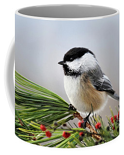 Coffee Mug featuring the mixed media Pine Chickadee by Christina Rollo