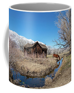 Pine Creek Horse Drinking Coffee Mug