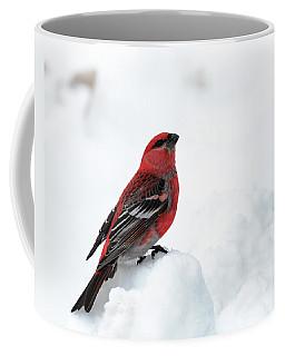 Pine Grosbeak In The Snow Coffee Mug