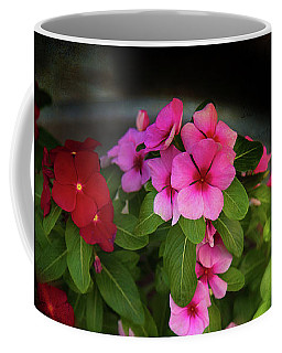 Coffee Mug featuring the photograph Pink And Red by Milena Ilieva
