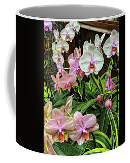 Pink And  White Orchids Coffee Mug