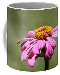 Pink Coneflower In Pastel Coffee Mug